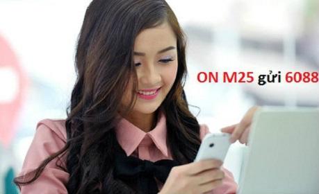 goi-cuoc-m25-vinaphone