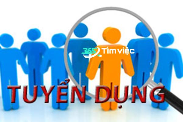 Giới thiệu việc làm tại Đà Nẵng với 5 công việc nên làm lúc thất nghiệp