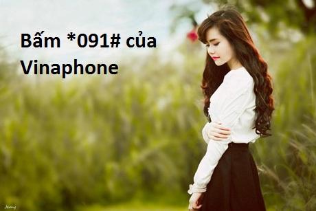 bam-*091# Vinaphone