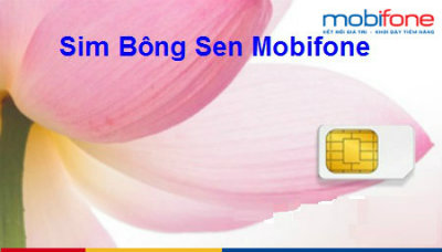 sim-bong-sen-cua-mobifone