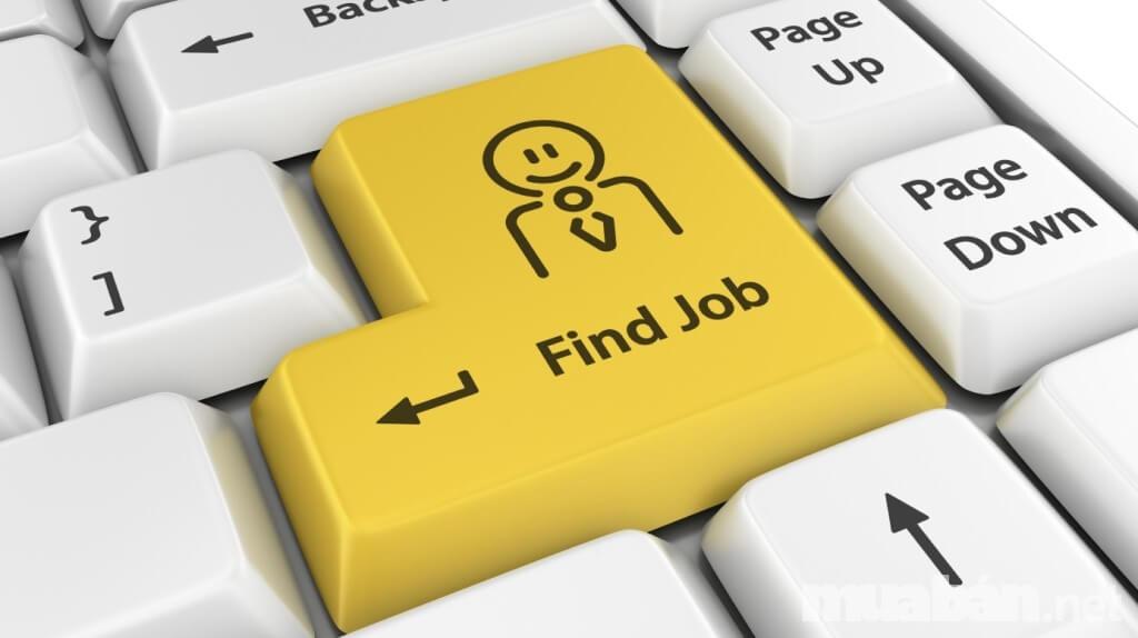 Tìm kiếm việc làm