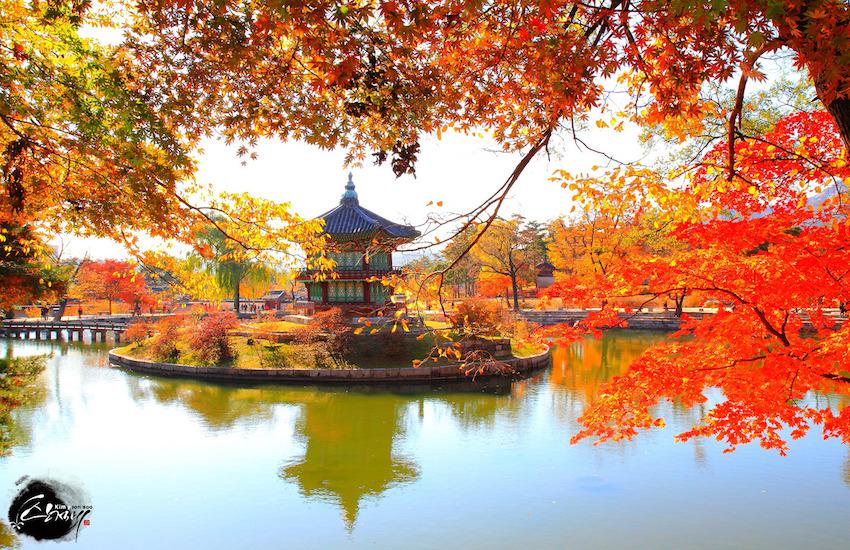 Những điểm đặc biệt nhất định phải ghé qua khi đi du lịch Seoul Hàn Quốc