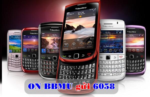 Hướng dẫn chi tiết cách đăng kí gói cước 3G BBMU BlackBerry Vinaphone
