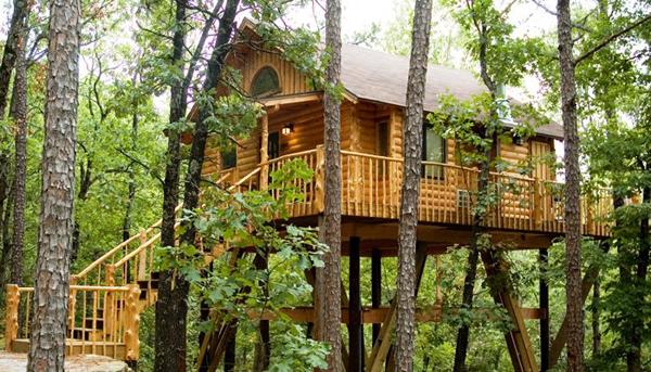 Top 10 khách sạn trên cây đẹp nhất trên thế giới (P1)