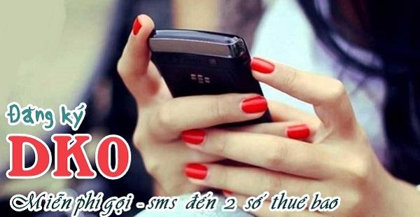 Miễn cước gọi thoại, nhắn tin đến 2 thuê bao với gói cước DK0 Viettel