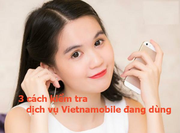 Các cách kiểm tra dịch vụ đang dùng của Vietnamobile