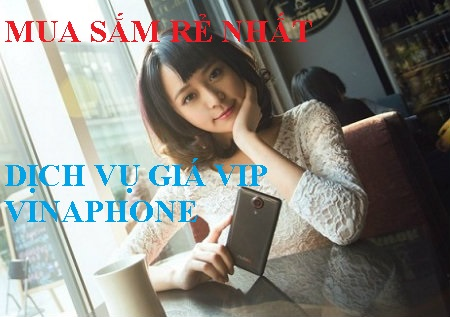 Mua sắm rẻ nhất với dịch vụ giá Vip Vinaphone