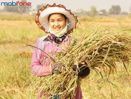 Điều mới nhất về dịch vụ Nhà nông xanh Mobi