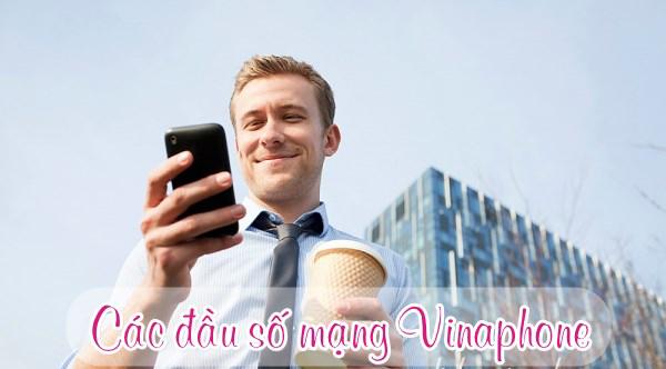 Check in các đầu số tổng đài Vinaphone cho người dùng