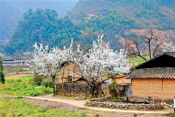 Du lịch Hà Giang mùa nào đẹp nhất trong năm?