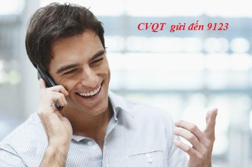 Những điều cần biết về dịch vụ CVQT Vinaphone