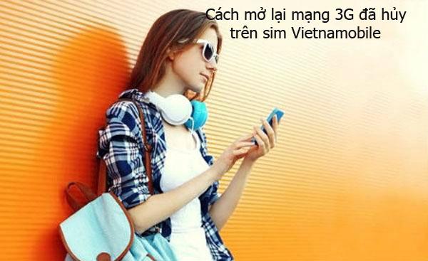 Hướng dẫn 2 cách mở lại mạng 3G khi đã hủy trên sim Vietnamobile