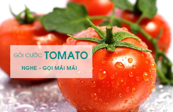Hòa mạng sim Tomato Viettel – Không lo ngày sử dụng của thuê bao