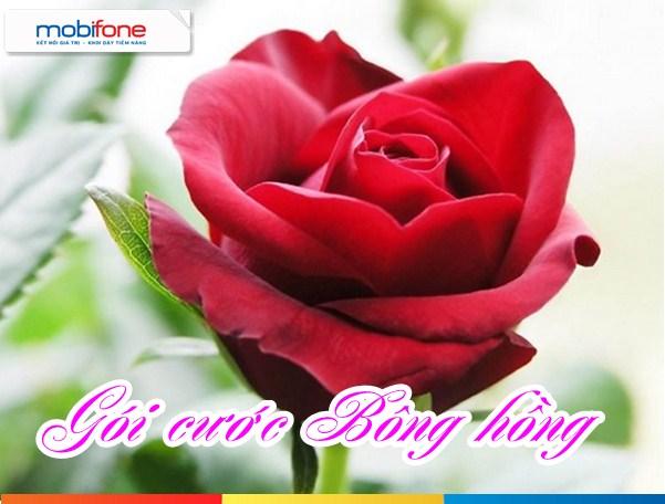 Hướng dẫn đăng  kí gói bông hồng mobifone nhận ưu đãi lớn nhất