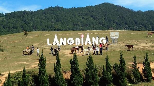 Điểm mặt những địa điểm vui chơi  ngoại thành Đà Lạt hút khách du lịch