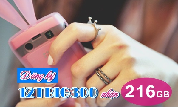 Bật mí cách nhận ưu đãi từ gói 3G chu kỳ dài 12TBIG300 Vinaphone
