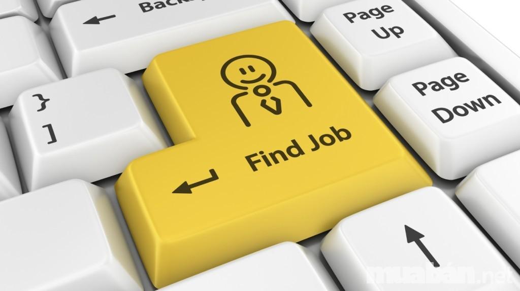 Để xin việc làm ngành IT cần có kỹ năng gì?