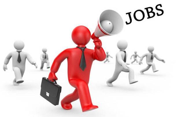 Bí kíp xin việc làm ngành nhân sự