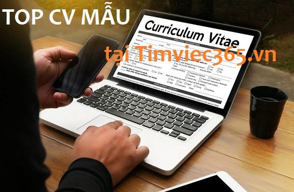 Sử dụng top CV mẫu sao cho hiệu quả, bạn cần biết!