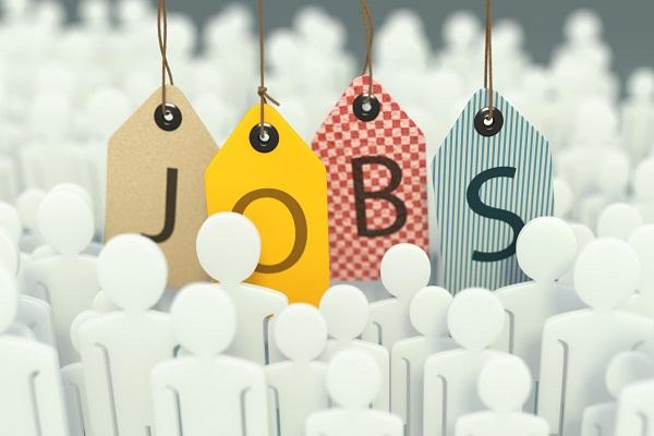 Bật mí cách tìm việc làm hiệu quả cho sinh viên mới ra trường