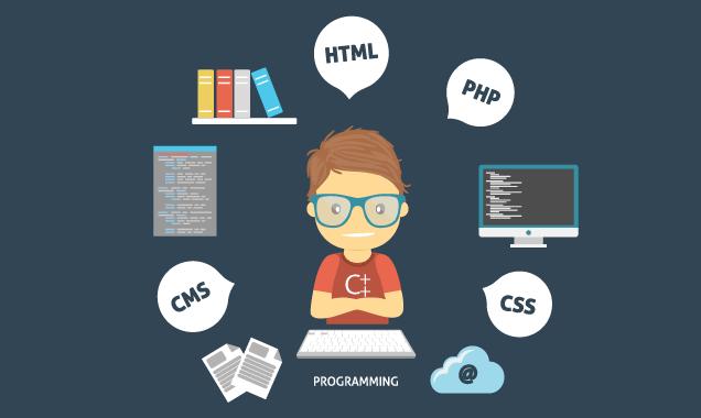 Mức lương lập trình web tại Việt Nam hiện nay là bao nhiêu?